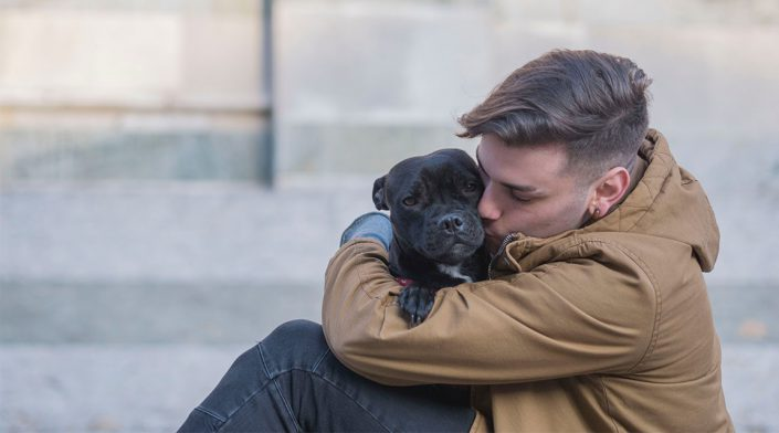Ways Pets Support Mental Health