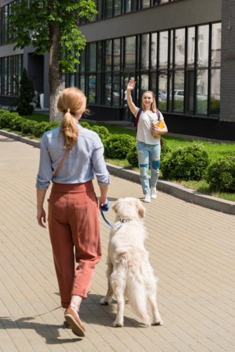 Stranger Danger' Reduce Your Dog's Anxiety When Meeting People
