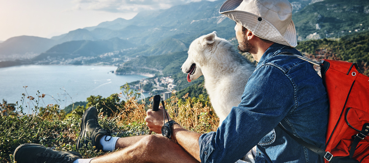 Hiking with Dogs Tips for a Great Adventure out in the Wilderness!