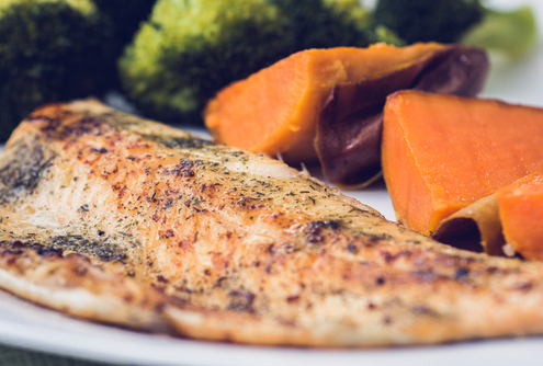"Tuesday's Treat Salmon & Sweet Potato ""Brownies"""