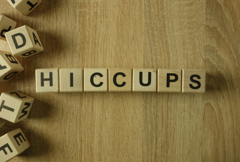 Dog Hiccups What You Need to Know