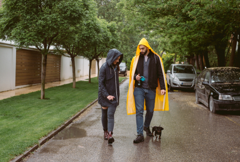 Rainy Days with Your Pup!