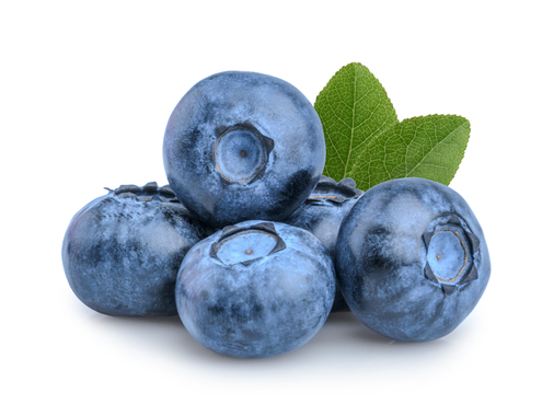 Tuesday's Treat Frozen Blueberry Treats
