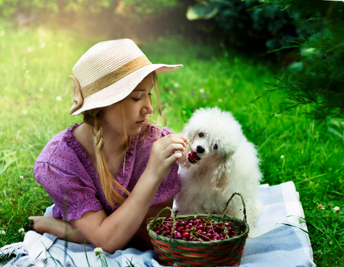 Have a Safe and Fun Picnic with Your Pup!