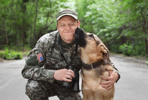 Veterans & Service Dogs
