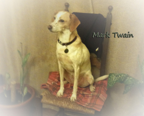 """Heaven goes by favor. If it went by merit, you would stay out and your dog would go in."""" – Mark Twain (Author)"""