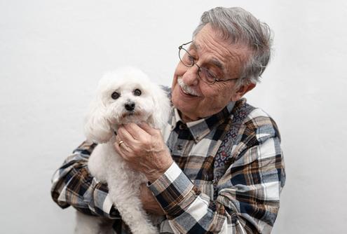 Best Dog Breeds for Senior Citizens