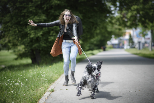 Training Tip Not Switching Sides While Walking on the Leash