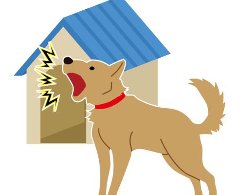Training Tip Interpreting Dog Barks and Noise